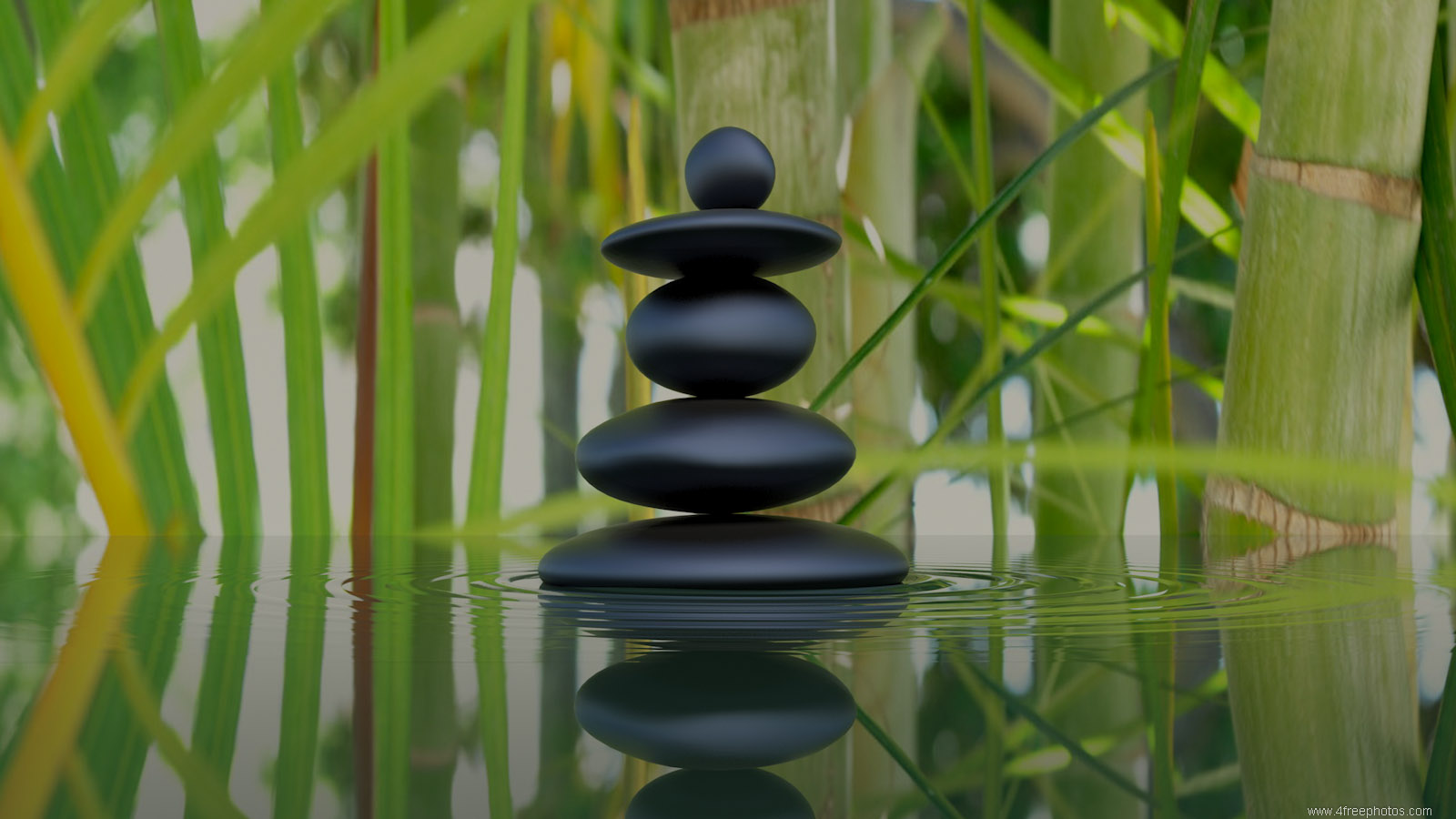 Zen stones and bamboo reflection in water