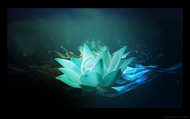 blue_lotus_by_shygirlxoxo