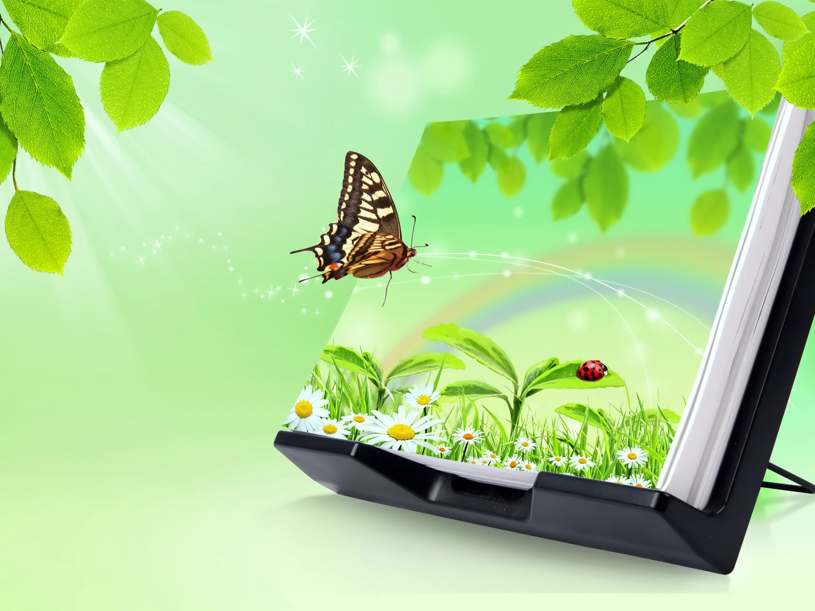 butterfly-flying-out-of-a-3d-book-green-normal