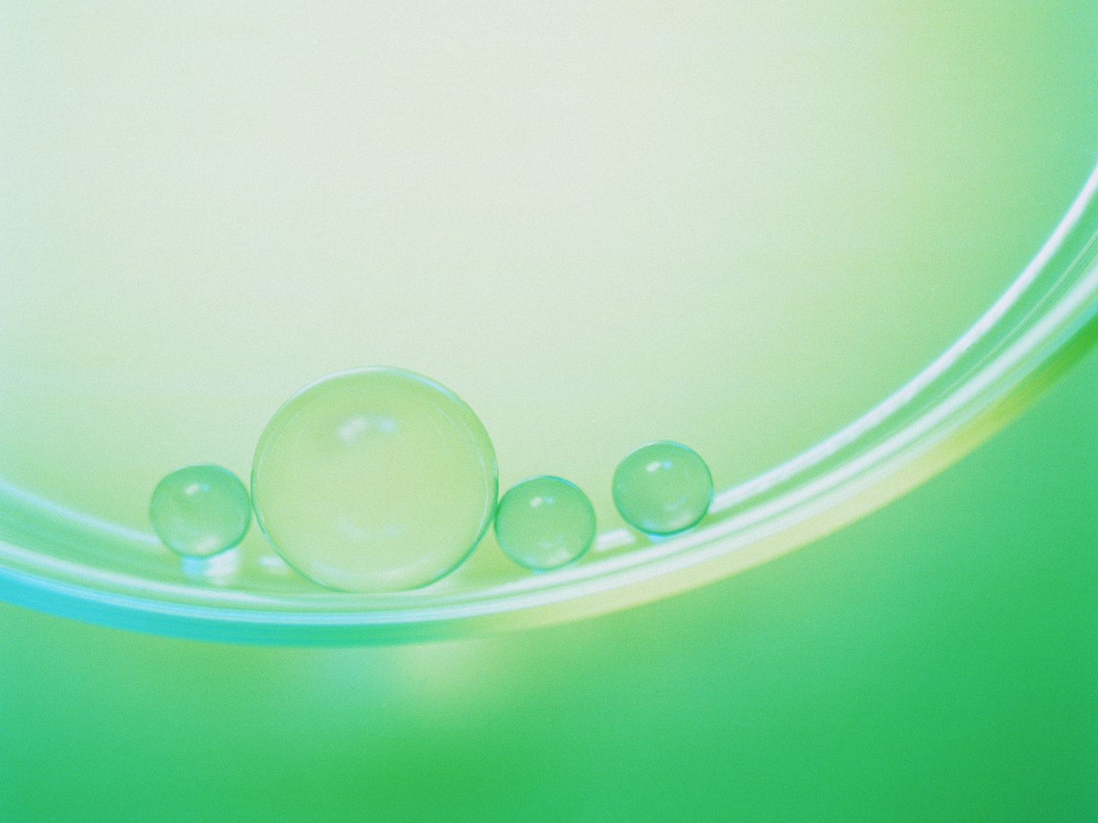 Green Glass Balls Lying in a Curve