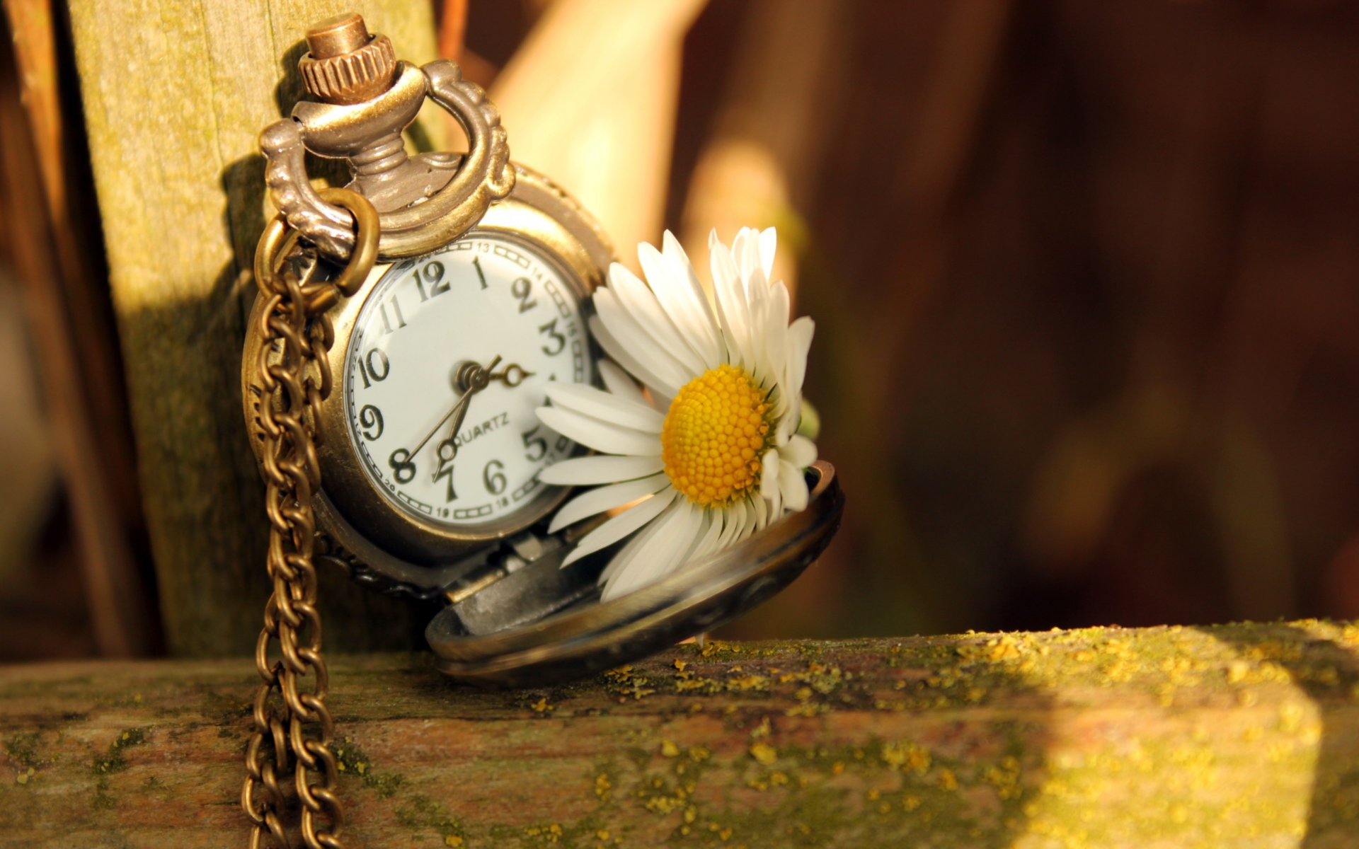 Vintage-Watch-And-Daisy-1920x1200