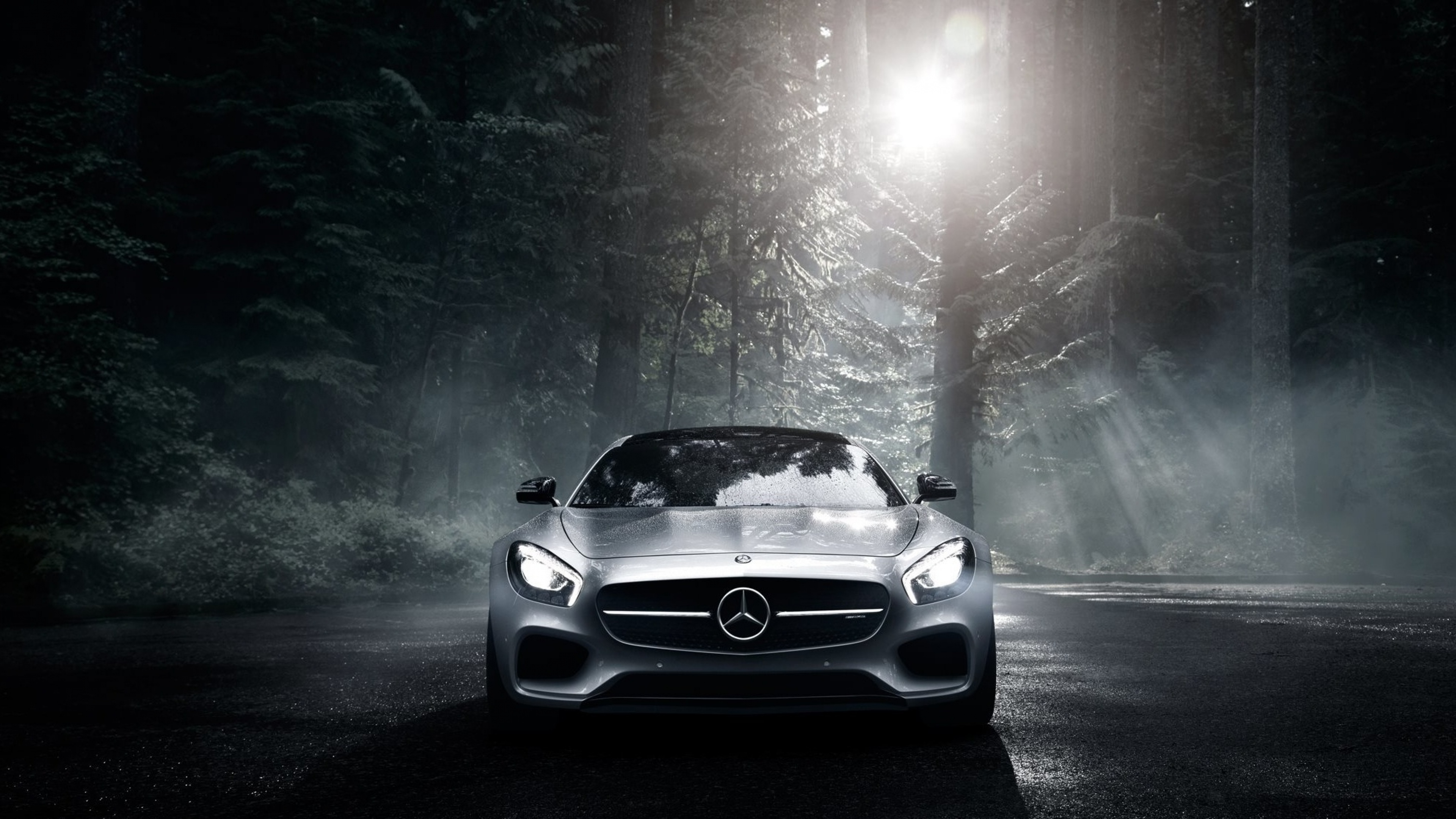 mercedes_benz_mercedes_amg_front_view_silver_wood_100115_3840x2160