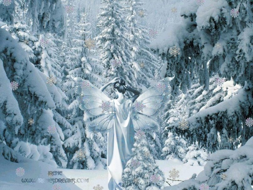 595494__fairy-of-the-winter_p