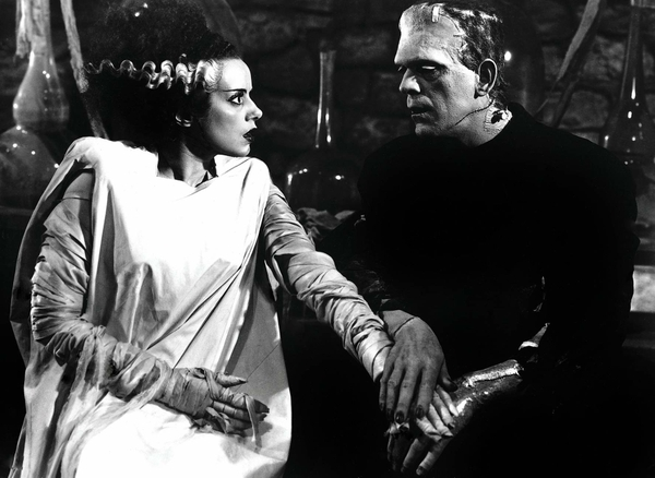 frankenstein-mary selly-alegorias.es (6)