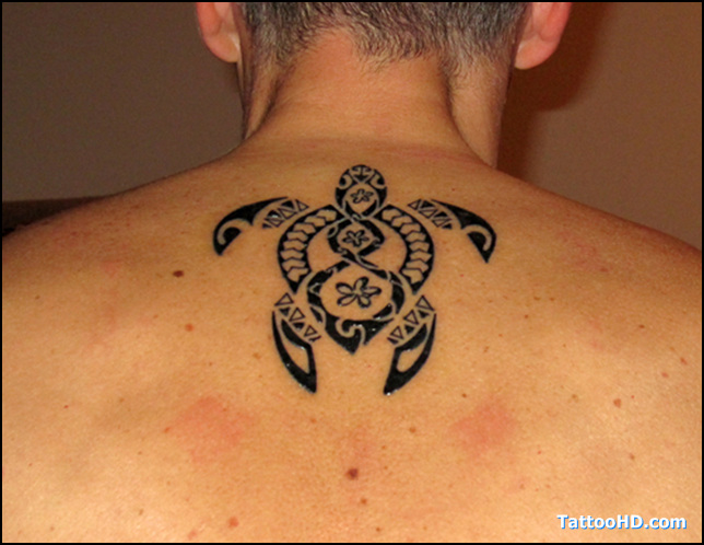 tortugas-maories-Tatuajes.top-19