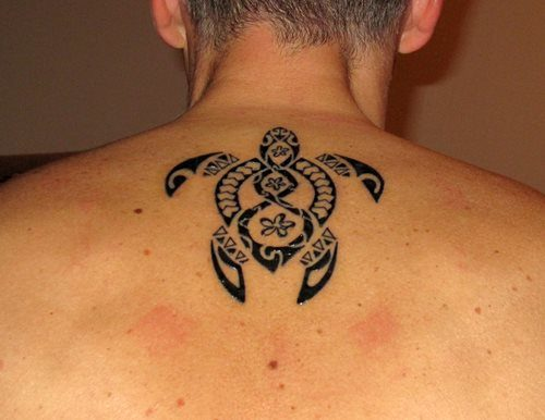 tortugas-maories-Tatuajes.top-47